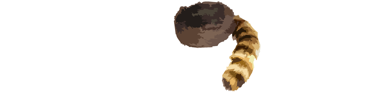 logo traperzy.com.pl