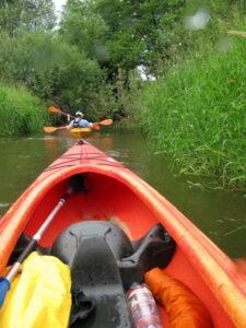 spływ dzika rzeka